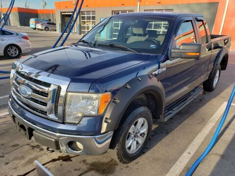 2009 Ford F-150 for sale at Auto Hub in Grandview MO