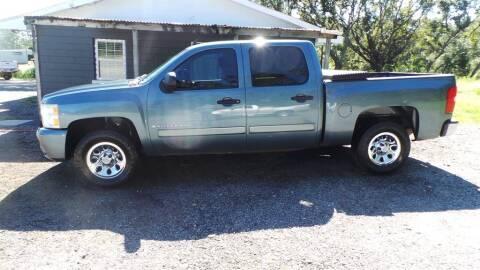 2008 Chevrolet Silverado 1500 for sale at action auto wholesale llc in Lillian AL