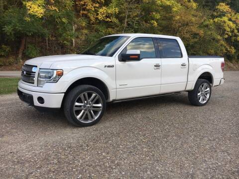 2013 Ford F-150 for sale at DONS AUTO CENTER in Caldwell OH
