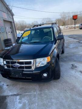 2010 Ford Escape for sale at John's Auto Sales & Service Inc in Waterloo NY