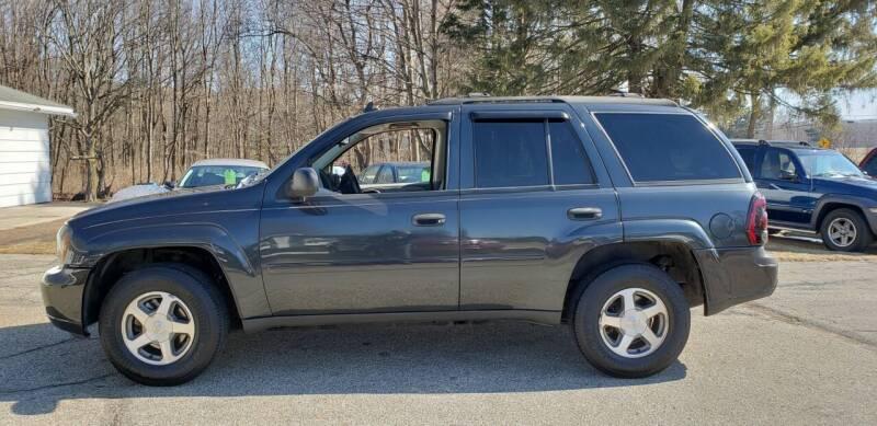 2006 Chevrolet TrailBlazer for sale at Larrys Used Cars in Hartford MI