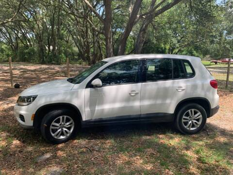 2014 Volkswagen Tiguan for sale at Royal Auto Mart in Tampa FL
