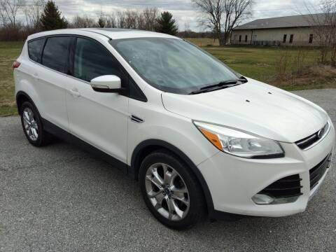 2013 Ford Escape for sale at CarZip in Indianapolis IN