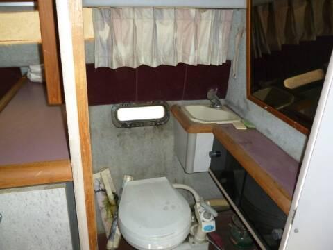 1986 Bayliner sunbridge cutty cabin