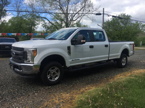 2017 Ford F-250 Super Duty for sale at DONS AUTO CENTER in Caldwell OH