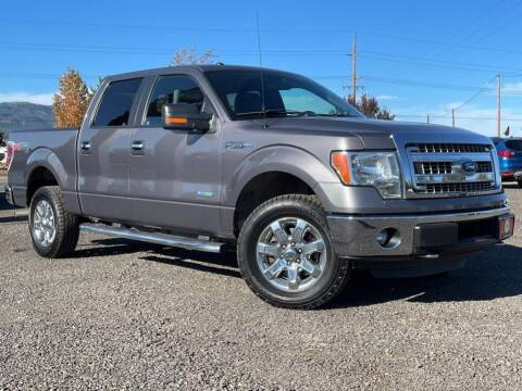2014 Ford F-150 for sale at The Other Guys Auto Sales in Island City OR