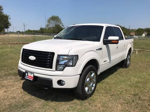2011 Ford F-150 for sale at LA PULGA DE AUTOS in Dallas TX