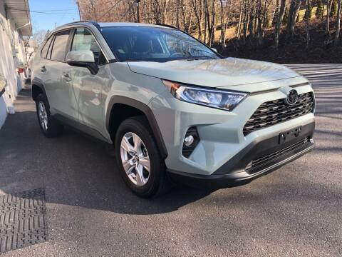 2019 Toyota RAV4 for sale at Hoys Used Cars in Cressona PA