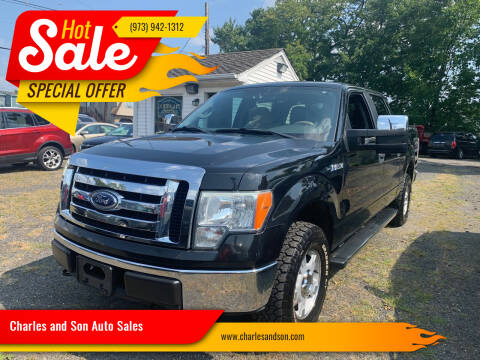 2010 Ford F-150 for sale at Charles and Son Auto Sales in Totowa NJ