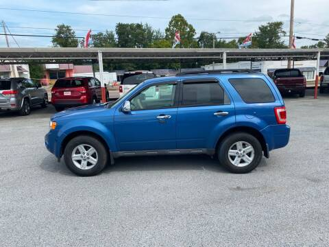 2009 Ford Escape for sale at Lewis Used Cars in Elizabethton TN