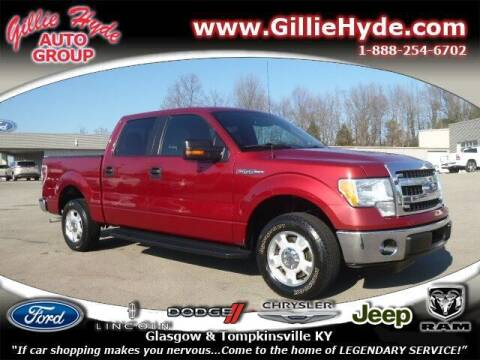 2014 Ford F-150 for sale at Gillie Hyde Auto Group in Glasgow KY