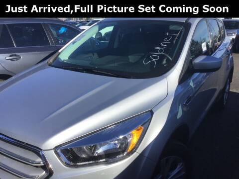 2019 Ford Escape for sale at Royal Moore Custom Finance in Hillsboro OR