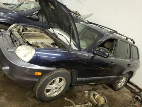 2004 Hyundai Santa Fe for sale at Geareys Auto Sales of Sioux Falls, LLC in Sioux Falls SD