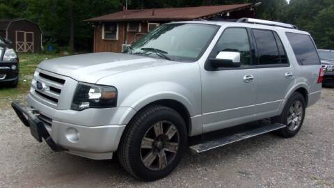 2010 Ford Expedition for sale at Select Cars Of Thornburg in Fredericksburg VA