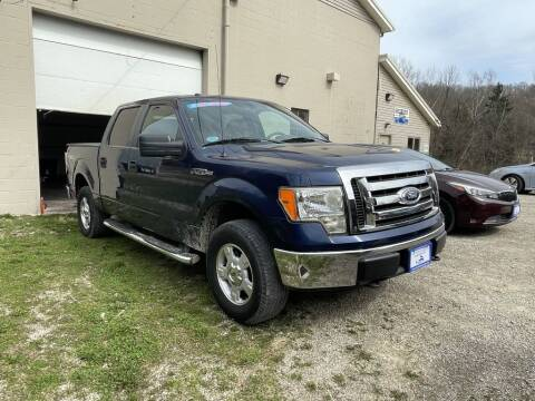 2010 Ford F-150 for sale at Court House Cars, LLC in Chillicothe OH
