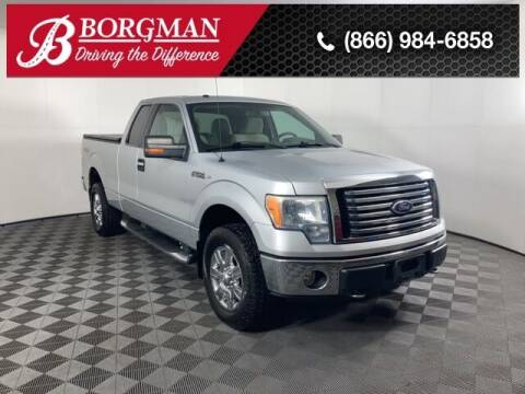 2010 Ford F-150 for sale at BORGMAN OF HOLLAND LLC in Holland MI