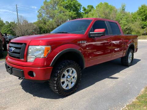 2010 Ford F-150 for sale at Gator Truck Center of Ocala in Ocala FL