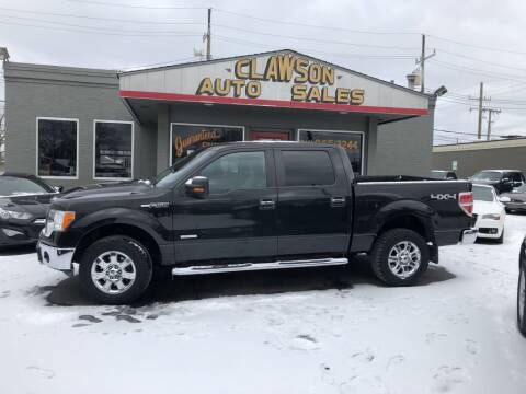 2014 Ford F-150 for sale at Clawson Auto Sales in Clawson MI