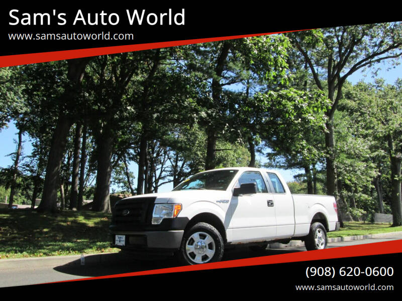 2011 Ford F-150 for sale at Sam's Auto World in Roselle NJ