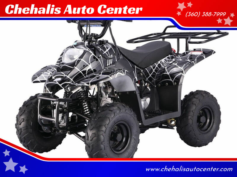2021 Tao B110 for sale at Chehalis Auto Center in Chehalis WA