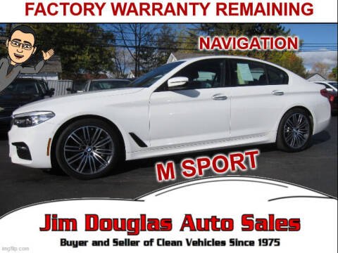 2018 BMW 5 Series for sale at Jim Douglas Auto Sales in Pontiac MI