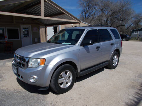 2011 Ford Escape for sale at DISCOUNT AUTOS in Cibolo TX