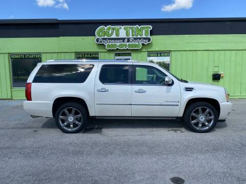 2008 Cadillac Escalade ESV for sale at GOT TINT AUTOMOTIVE SUPERSTORE in Fort Wayne IN