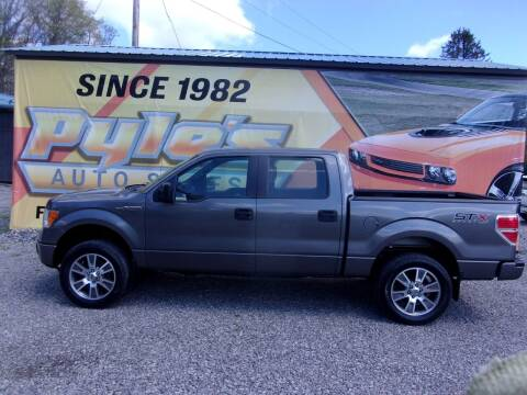 2014 Ford F-150 for sale at Pyles Auto Sales in Kittanning PA
