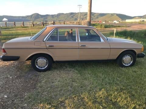 1979 Mercedes-Benz 280-Class for sale at Classic Car Deals in Cadillac MI